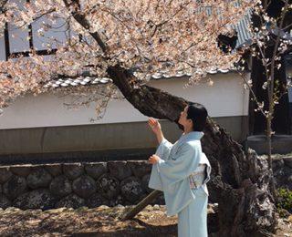 桜と共に・・春の撮影会